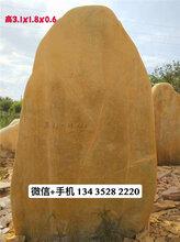 深圳造景石,惠州大型刻字景观石,学校黄蜡石
