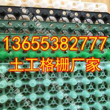 漯河钢塑土工格栅生产商产品性能