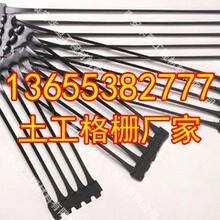 洛阳钢塑土工格栅出厂价格编织