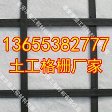 三门峡钢塑土工格栅出厂价格国标