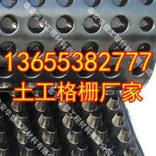 郑州钢塑土工格栅生产厂家宽度