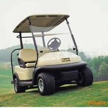 卓越A1S2两座电动高尔夫球车价格是多少?
