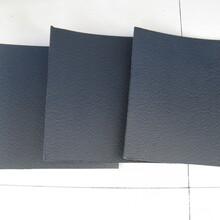 防水板防水毯,復合土工膜,膨潤土防水毯,德州潤澤材料土工材料圖片