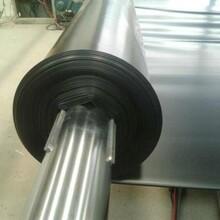四川成都供应优质防水板糙面防水板吊带防水板图片