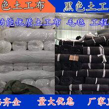 山西吕梁厂家供应土工布长丝土工布短纤土工布批发耐腐蚀图片