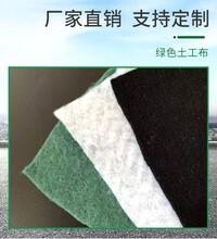 防滲土工布廠家公路養護長絲土工布道路養護布圖片