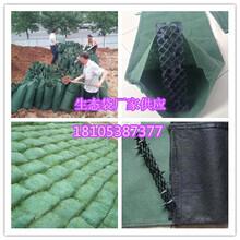 南昌生态袋厂家--环保生态袋--制作方法、防护原理图片