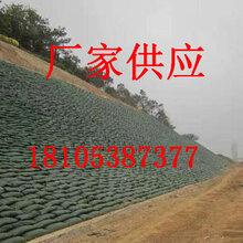 屋顶绿化排水板工作原理_攀枝花厂家