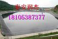 渝中海岸边坡防护土工网,厂家,经销商