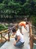 仿木纹栏杆施工
