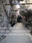 湖南湖北广西贵州江西塑石假山施工队伍图片