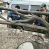 仿树藤栏杆施工