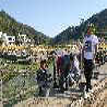 青岛塑石假山施工