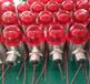 24V防爆報警燈不銹鋼防爆型聲光報警燈304蜂鳴器工業用聲光報警器
