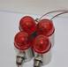 聲光報警器24V聲光報警燈led報警燈警報燈報警燈304不銹鋼蜂鳴器