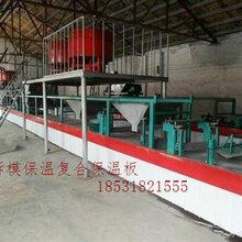 温州免拆模保温一体板生产设备厂家