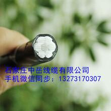 云南昆明厂家铝芯架空绝缘线国标高压JKLYJ-10KV-240平方架空线图片