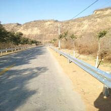 生产安装高速护栏板防撞栏高速公路配件端头镀锌喷塑热侵品质保证最新行情
