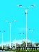 康大燈桿廠主營:道路燈,中華燈,景觀燈,庭院燈,太陽能路燈,LED路燈