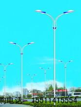 康大灯杆厂主营:道路灯,中华灯,景观灯,庭院灯,太阳能路灯,LED路灯