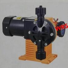 意大利WRS威尔赛计量泵图片