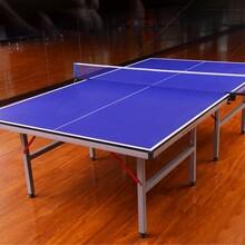 石家庄室内乒乓球台厂家折叠乒乓球台专业工厂直销