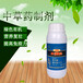 上海黄桃流胶病防控方案溃腐灵加有机硅原液涂抹