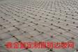 定制现货:SNS被动防护网Rocco环形网柔性防护网拦石防护网钛克网