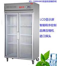 XD--1500HWG恒温恒湿储存柜