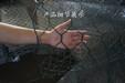 供应平纹编织石笼网六角边坡防护网格宾网加筋石笼网箱