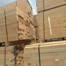 木方建筑木方广东木方坚固耐用无腐材根根好用图片