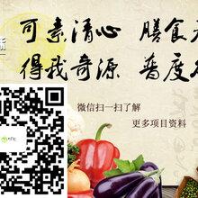 许昌素百味营养快餐素食自助圆你的创业梦想