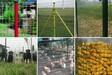 养殖绿色铁丝网#绿色铁丝网#养殖绿色铁丝网价格