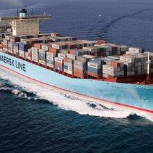 欢迎发货温州去山东东营一站式海运运输新闻资讯