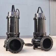 聊城潛水排污泵生產廠家圖片