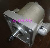 齿轮油泵-YBC12/80,YBC12/125齿轮油泵油泵厂家齿轮油泵