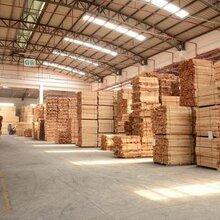 上海进口原木板材清关公司