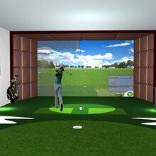 北京体太福高尔夫厂家室内高尔夫模拟器