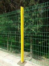 护栏网双边丝---?#25991;?#19997;网,专业生产供应