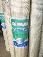 鑫耐絲網公司鋼絲網,包塑電焊網價格
