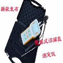 青岛路博LB-607A型便携式智能溶解氧分析仪