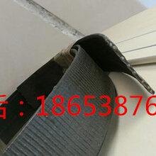 CAT钢塑复合拉紧带特性,CAT50022钢塑土工加筋带图片