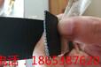 CAT30020钢塑复合拉筋带