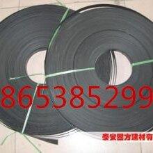CAT30022钢塑复合拉筋带产品特点