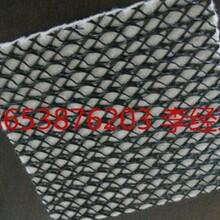山东泰安四方建材供应湖北武汉三维复合排水网欢迎您选购图片