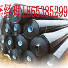 土工膜指標HDPE土工膜廠家四方建材圖片
