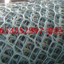 CE131土工网,土工网的作用概念图片