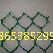 泰安四方建材三维土工网供应土工网价格特点图片