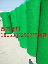 供應江蘇南京三維植被網可根據客戶訂貨圖片