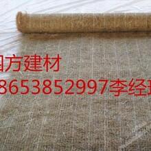 山东四方建材欢迎选购西安椰丝毯边坡绿化护理的新材料图片